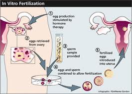 Unexplained Fertility