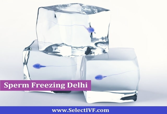 How can sperm freezing Delhi help you? - Select IVF