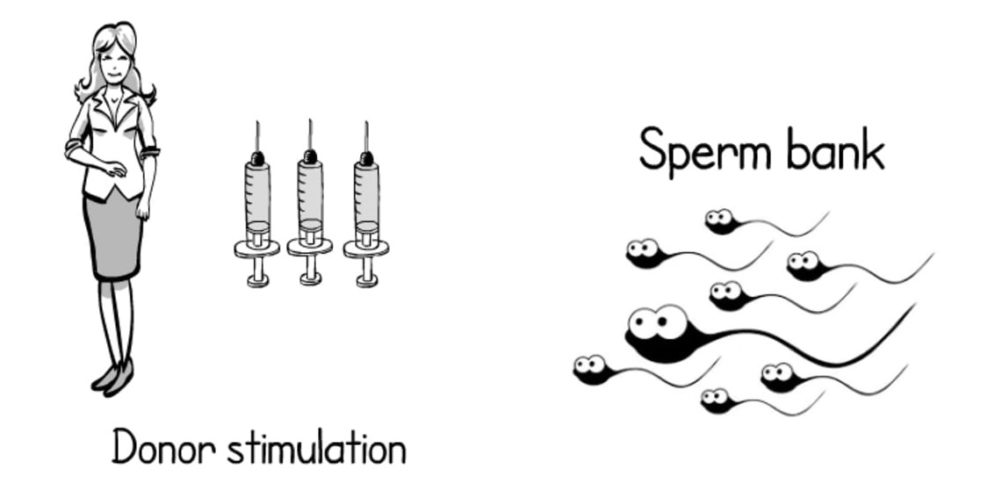 Sperm Donor mumbai