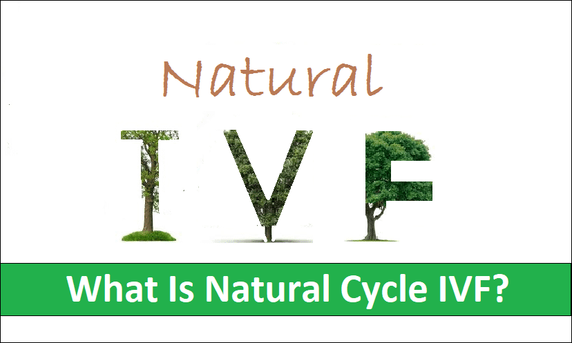 What Is Natural Cycle IVF