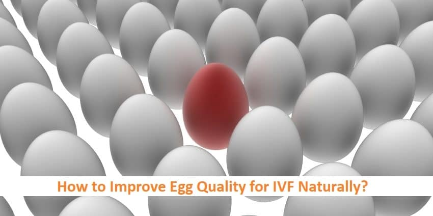 How to Improve Egg Quality for IVF Naturally