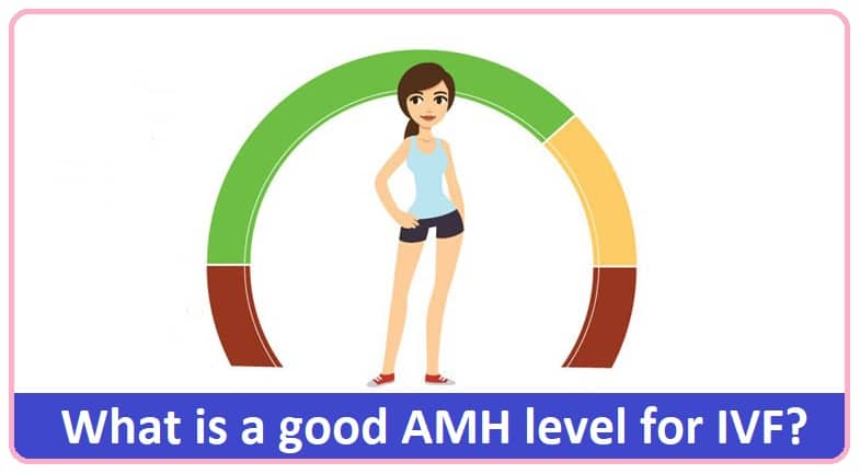 good AMH level for IVF