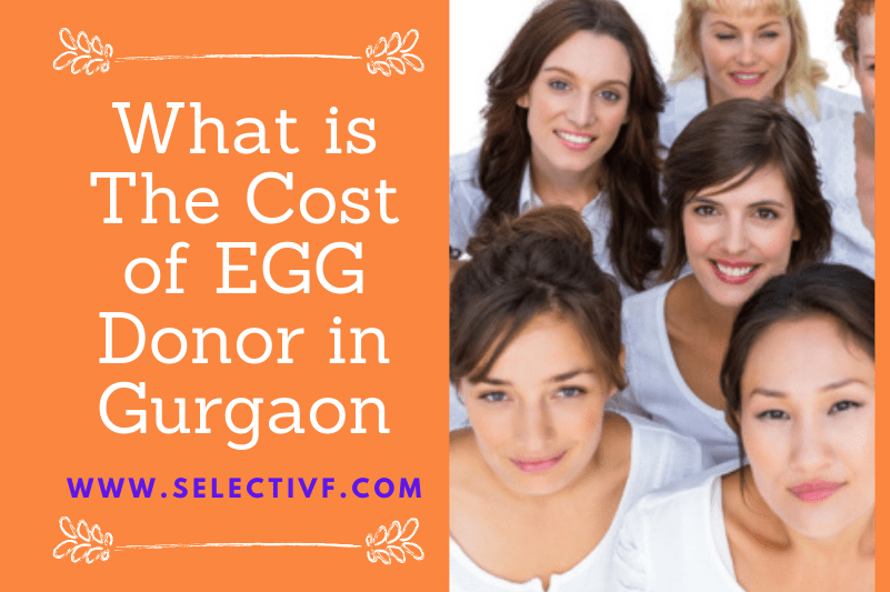EGG Donor Cost in Gurgaon